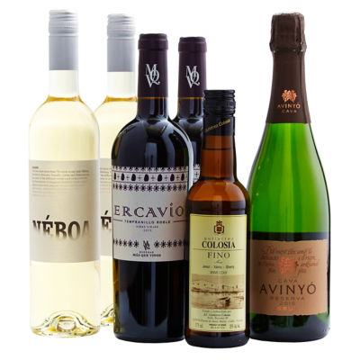Spanish Family Celebration Wine Collection (6 Bottles)
