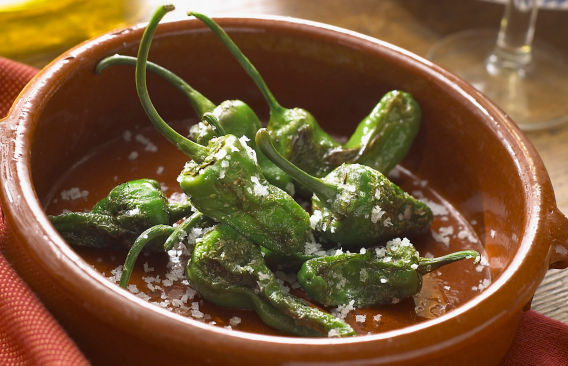 Authentic spanish food recipes for dishes dinners cooking padrn peppers recipe forumfinder Choice Image