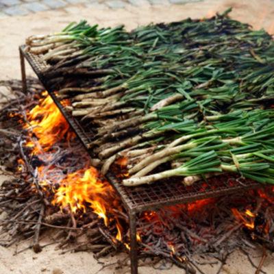 Calçots Catalan Grilling Onions
