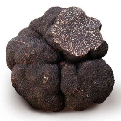 Fresh Black Winter Truffle, Flown from Spain - SHIPS FREE *See Details
